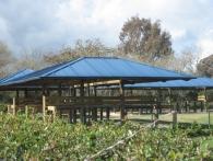 cubierta-panel-club-polo5