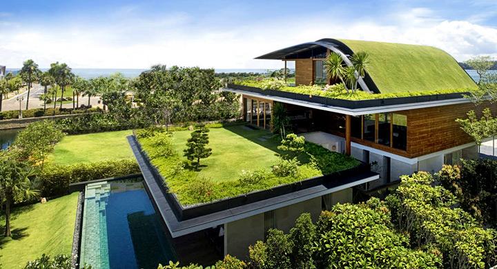 cubierta verde, terraza 2.0